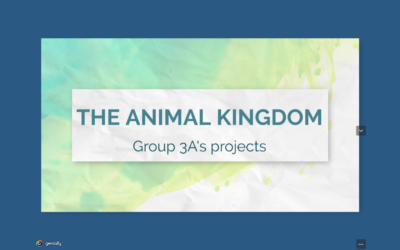 3A Projects about ANIMALS